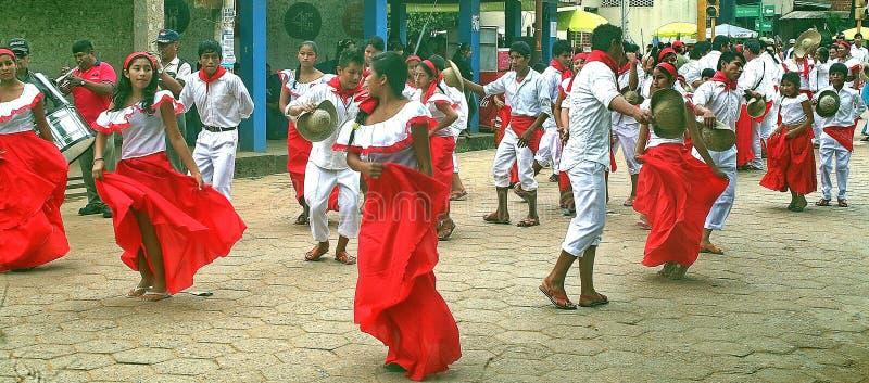 Parti i Trinidad Bolivia Sydamerika royaltyfria foton