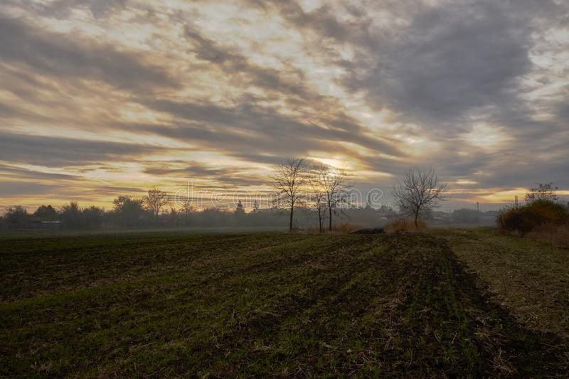 Plowed field in autum at dusk. Partial plowed field in autum at dusk with a beautiful sky in a rural zone and some trees royalty free stock image