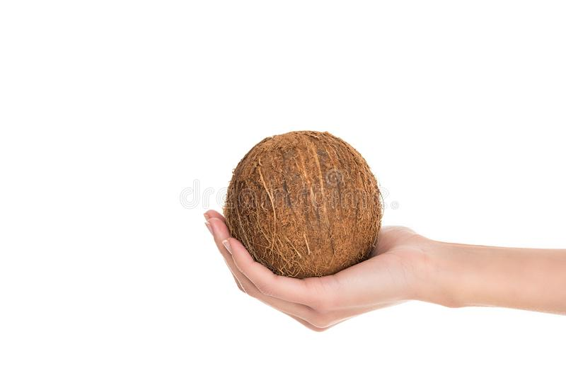 Partial view of woman holding coconut in hand. Isolated on white stock images