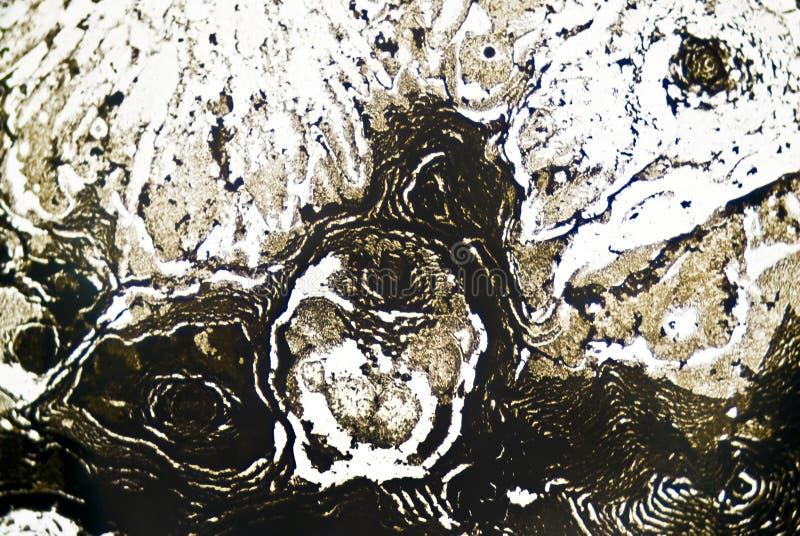 Particelle di fuliggine microscopiche fotografie stock