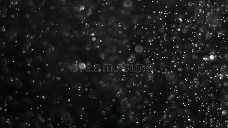 Particelle di polvere backlit reali con il chiarore reale della lente royalty illustrazione gratis