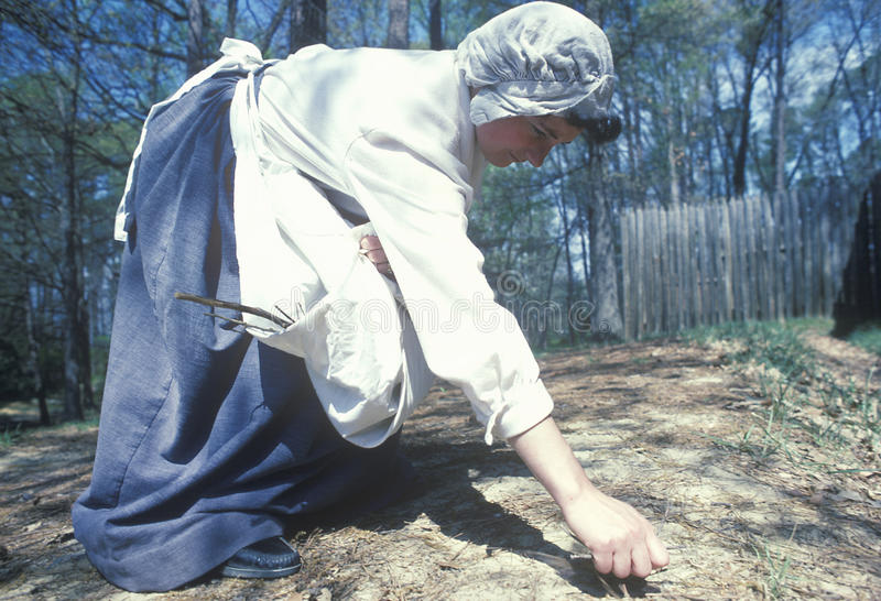 Participant working in garden. In historic Jamestown, Virginia, site of the first English Colony royalty free stock images