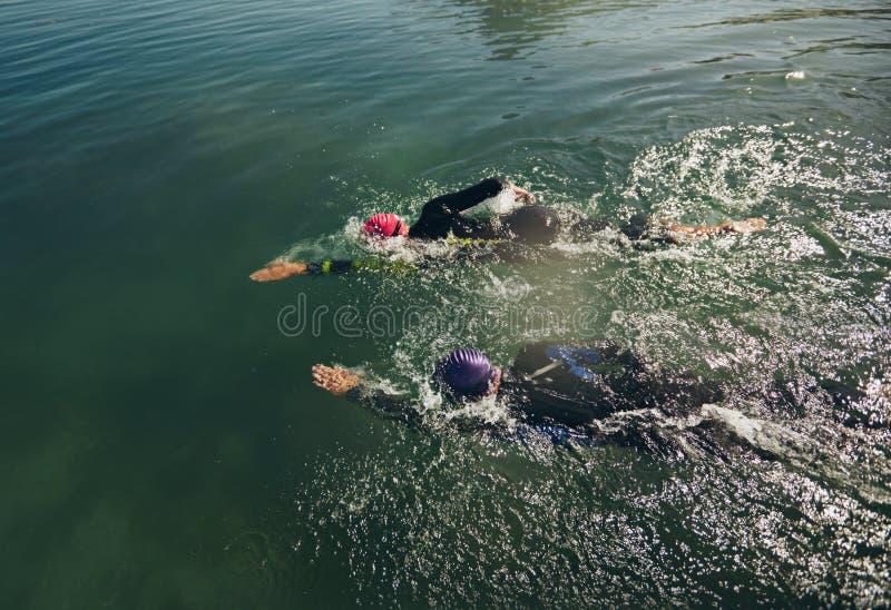 Participantes del Triathlon que practican para el evento de la nadada foto de archivo