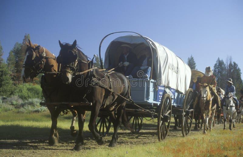 Participantes vivos de la historia en tren de carromatos cerca de Sacramento, CA fotografía de archivo libre de regalías