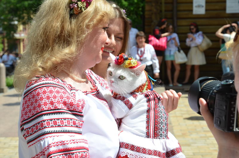 Participants of Mega march of embroideries in Kiev. Kyiv, Ukraine - May 24 2015: A woman holds the cat in Ukrainian traditional garments at Mega march of royalty free stock images