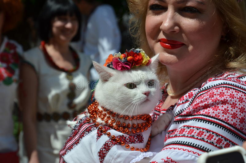 Participants of Mega march of embroideries in Kiev. Kyiv, Ukraine - May 24 2015: A woman holds the cat in the Ukrainian traditional garments at Mega march of stock photography