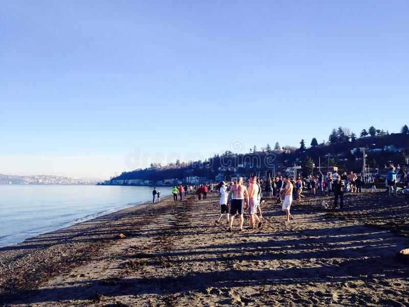 Participants Prepare To Do 2015 Polar Bear Plunge royalty free stock image