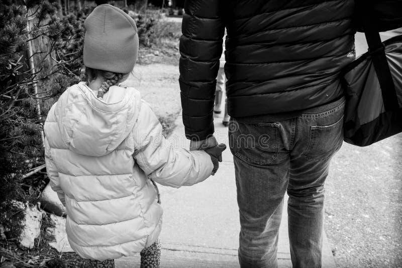Participation de main de fille et de papa photographie stock libre de droits
