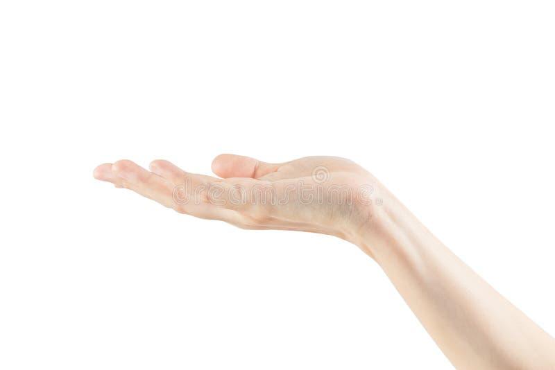 Participation femelle vide de main de femme photo stock