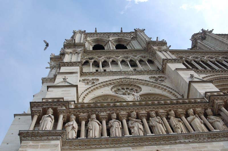 Particolare del Notre Dame con il volo della colomba sopra immagini stock libere da diritti