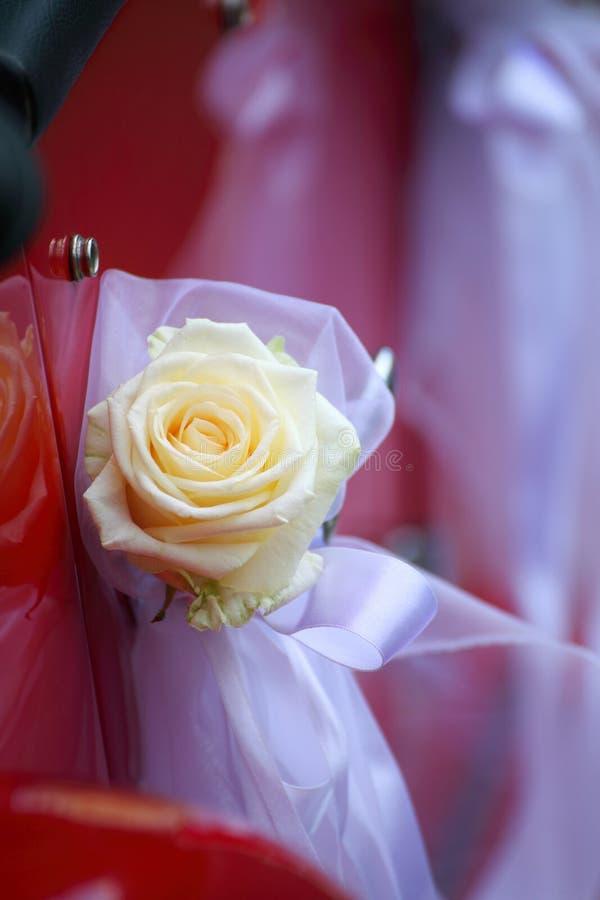 Particolare della cerimonia nuziale rossa del portello di automobile dell'annata fotografia stock