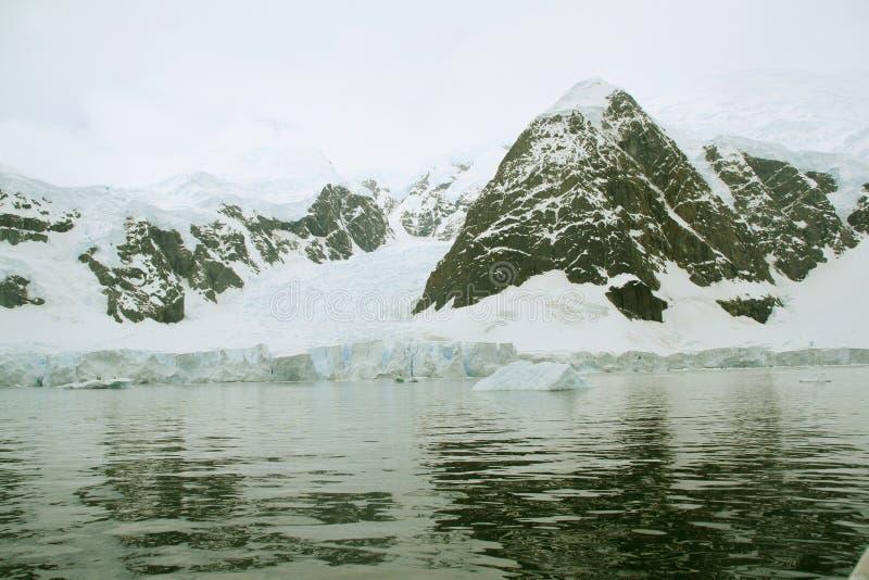 Download Particolare, Ghiacciaio Che Scorre Nell'oceano Immagine Stock - Immagine di antartide, artico: 7308943