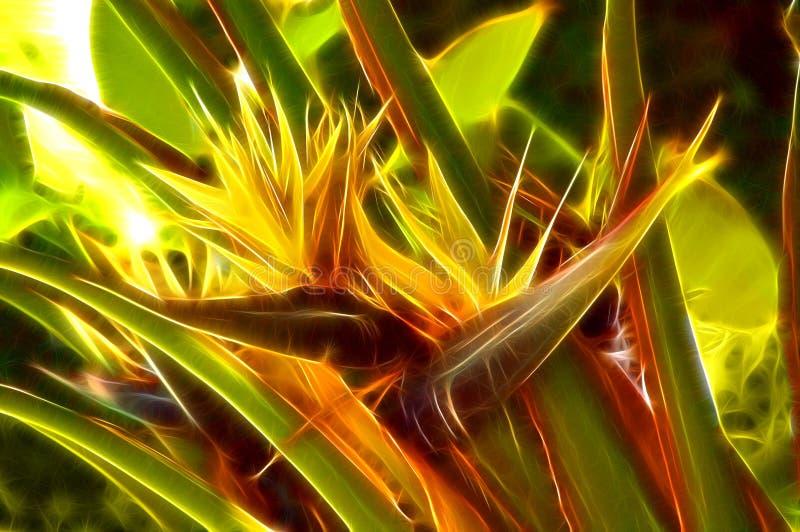 Particolari della natura: fiori immagini stock libere da diritti