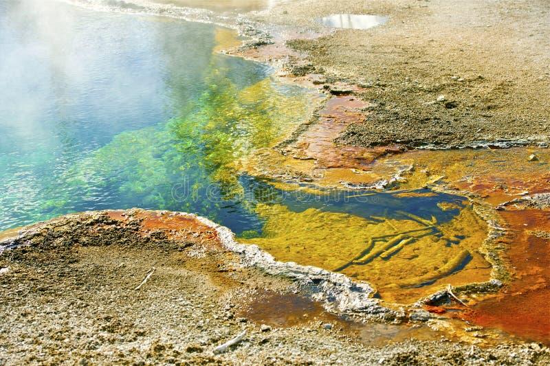 Particolari di Yellowstone immagini stock