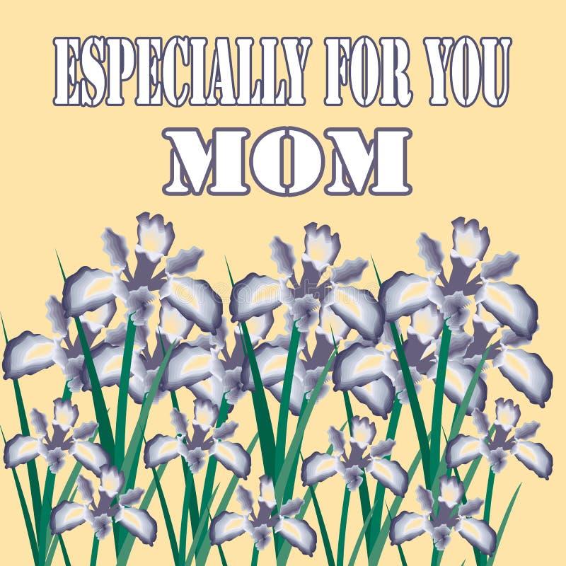 Particolarmente per voi mamma illustrazione vettoriale