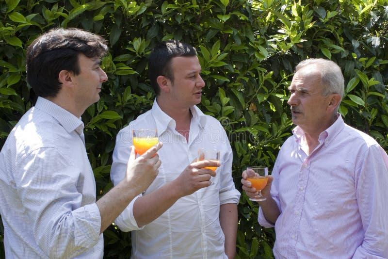 Partido da família no jardim foto de stock royalty free