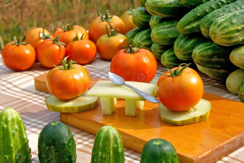 Partido de jantar dos vegetais imagem de stock