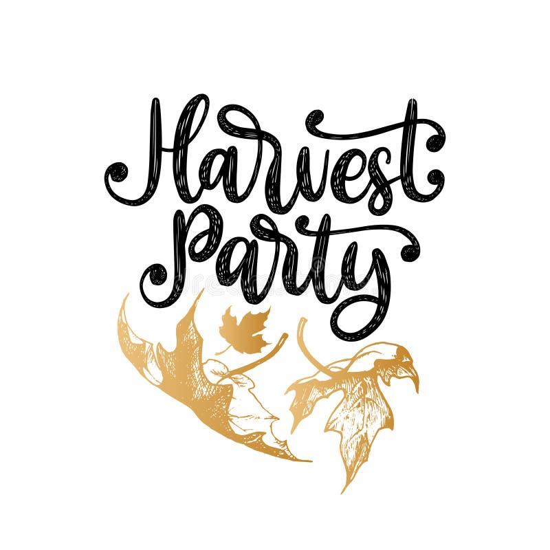 Partido de la cosecha, letras de la mano Vector el ejemplo con las hojas de arce para la invitación de la acción de gracias, plan ilustración del vector