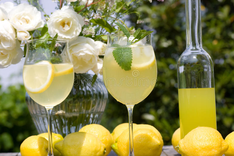 Partido do verão do cocktail foto de stock royalty free