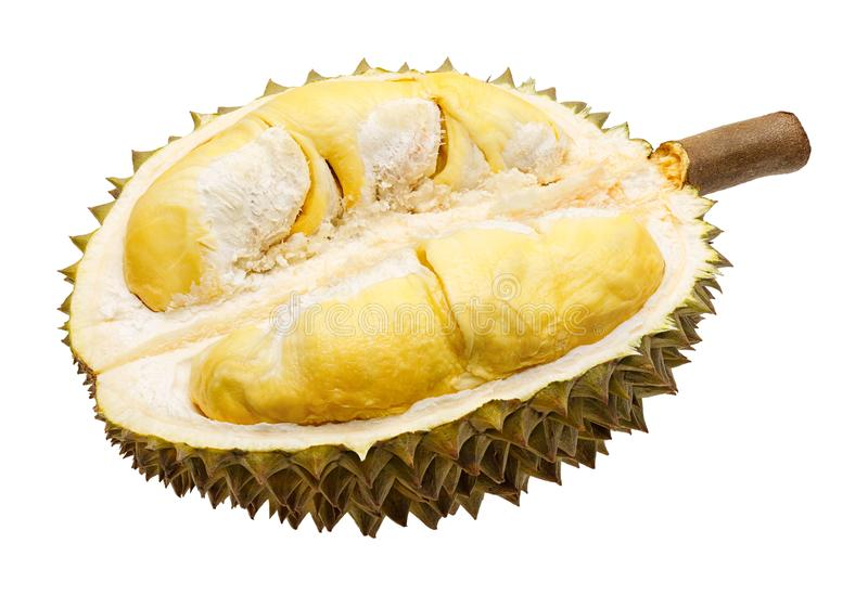 Partie de fruit de durian d'isolement photographie stock libre de droits