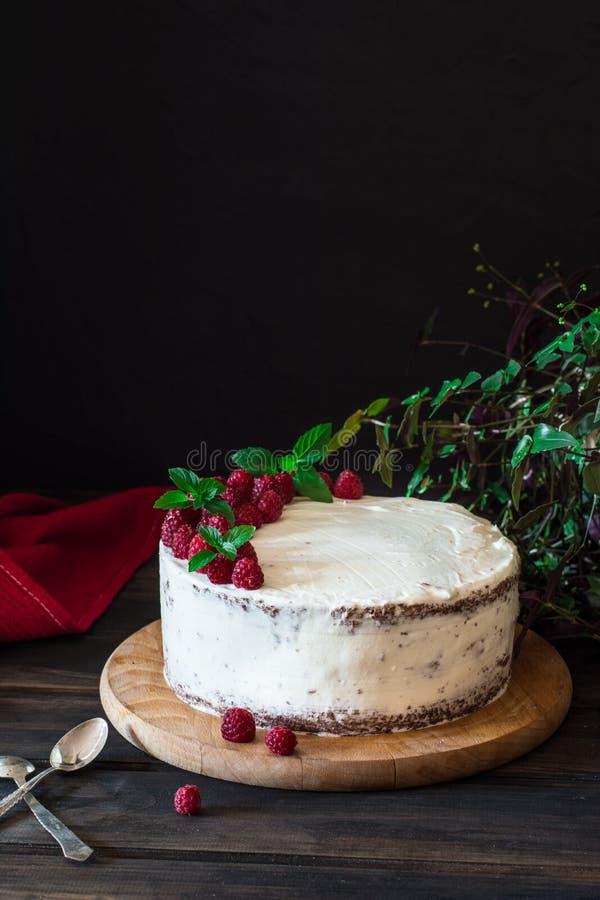 Partie de gâteau crémeux posé de fruit avec dans la fin vers le haut de la vue Gâteau de framboise avec du chocolat Gâteau de cho image libre de droits