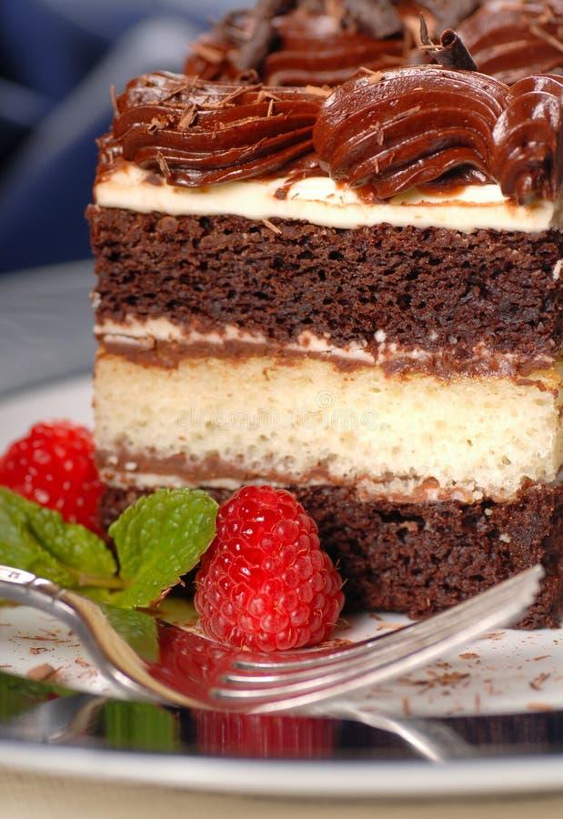 Partie de gâteau de couche de chocolat avec le fondant f photo stock