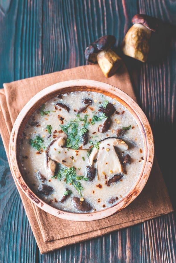 Partie de soupe à champignons crémeuse photo stock