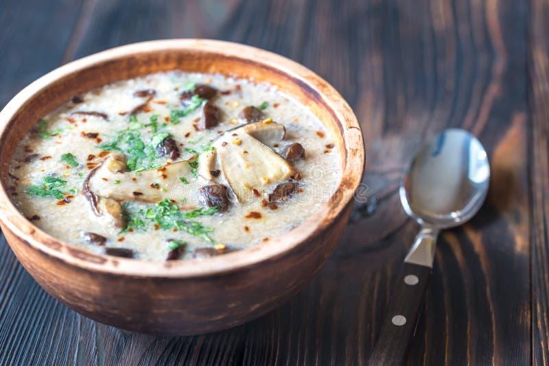 Partie de soupe à champignons crémeuse images libres de droits