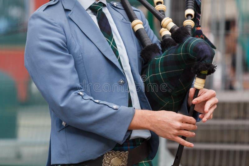 Partie supérieure de joueur de pipeau écossais du corps images libres de droits