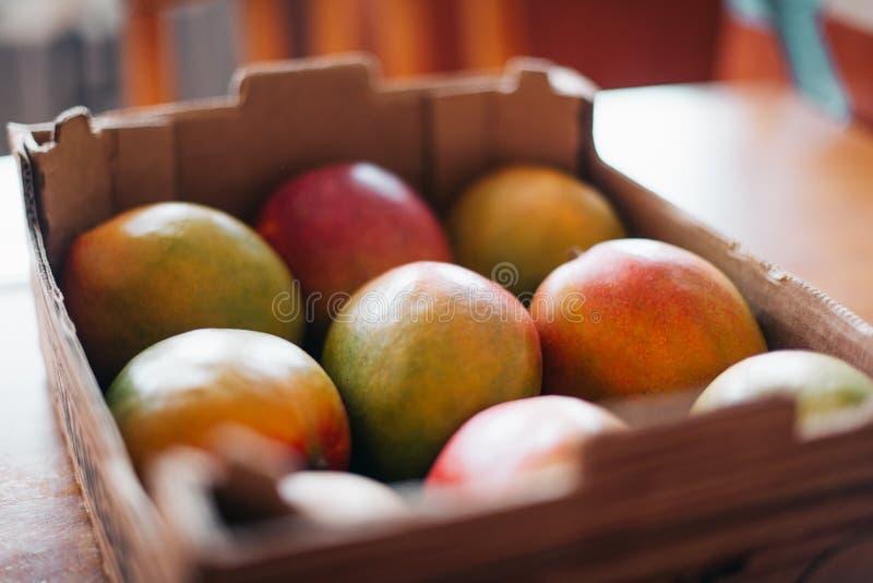 Partij van mango in een rek royalty-vrije stock foto