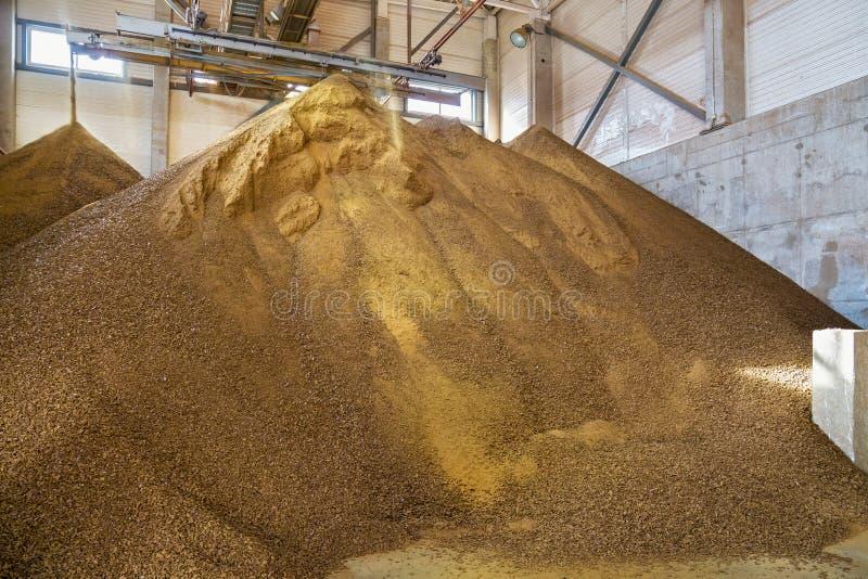 Partiklar av kakor i den jordbruks- fabriken royaltyfri bild