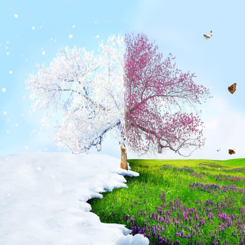 A partire dall'inverno alla sorgente fotografie stock