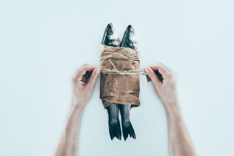partisk sikt av händer som slår in havsfisken i pappers- och binder med repet arkivbild
