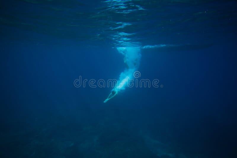 partisk sikt av mandykning in i havet arkivfoton