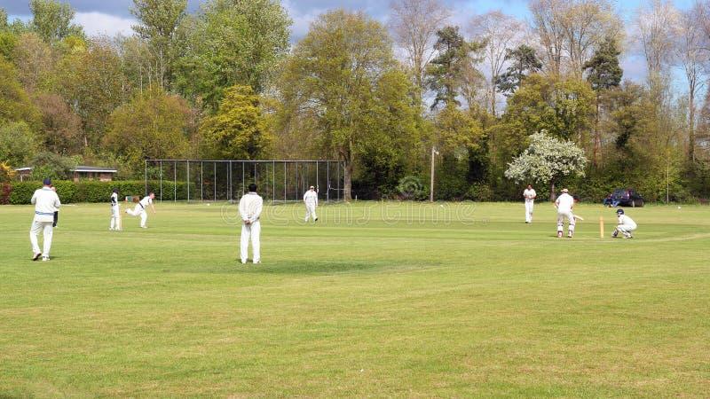 Partita del cricket del villaggio in Inghilterra fotografia stock