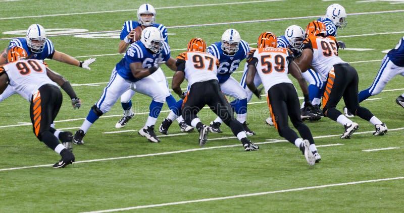 Partita di football americano del Colts-Bengals fotografia stock