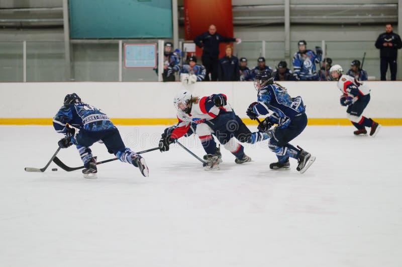 Partita Dinamo St Petersburg del hockey su ghiaccio delle donne contro Biryusa Krasnojarsk immagini stock