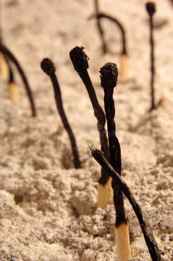Partite bruciate sulla sabbia fotografia stock