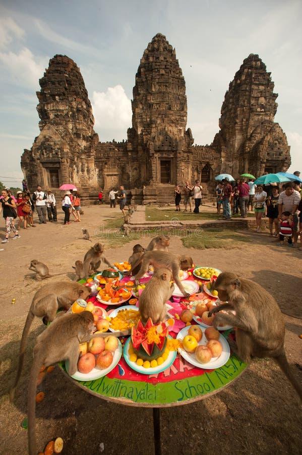 Partito della scimmia della Tailandia (buffet della scimmia della Tailandia) immagini stock libere da diritti