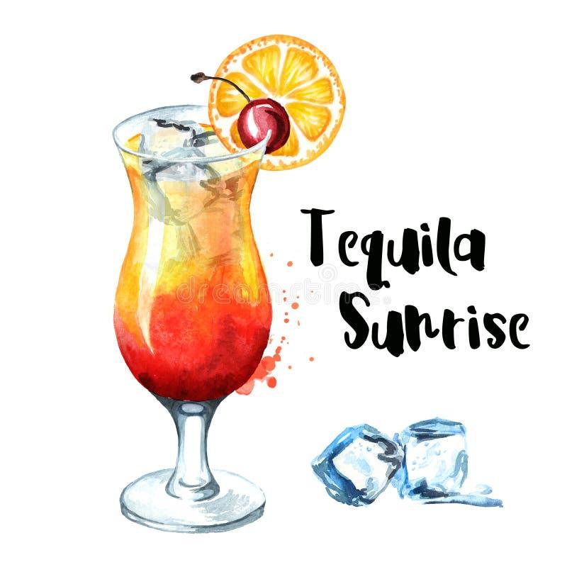 Partito di cocktail Cocktail di alba di tequila con la ciliegia, l'arancia ed i cubetti di ghiaccio illustrazione disegnata a man illustrazione di stock