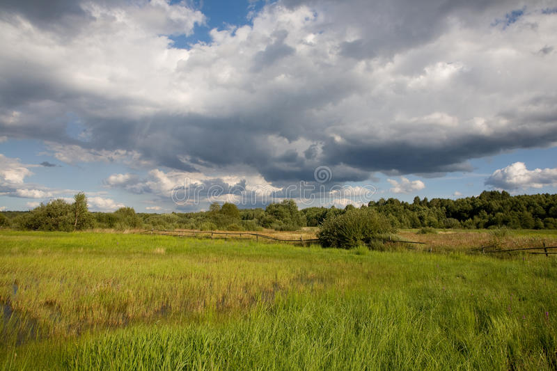 Download Partly Abandoned Natural Meadows Royalty Free Stock Photography - Image: 13419497