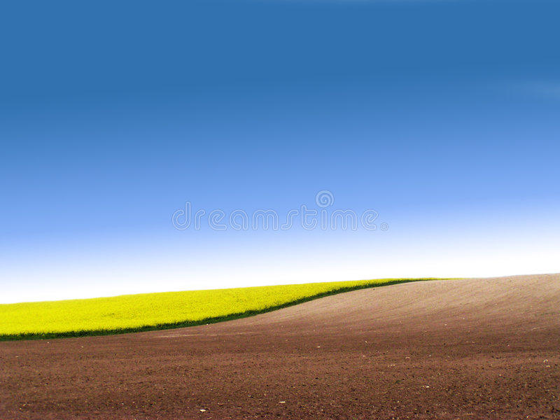 Partly ploughed field with. And blue sky stock images