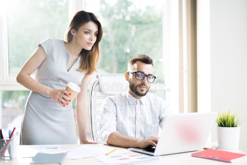 Partners die in Zonlicht werken royalty-vrije stock afbeelding