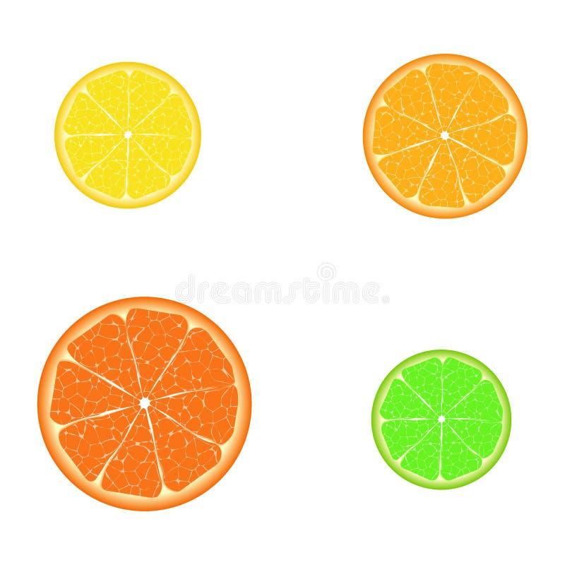 Parts de citron illustration libre de droits