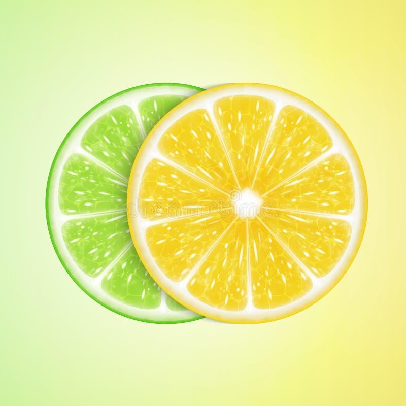 Parts de citron et de limette illustration de vecteur