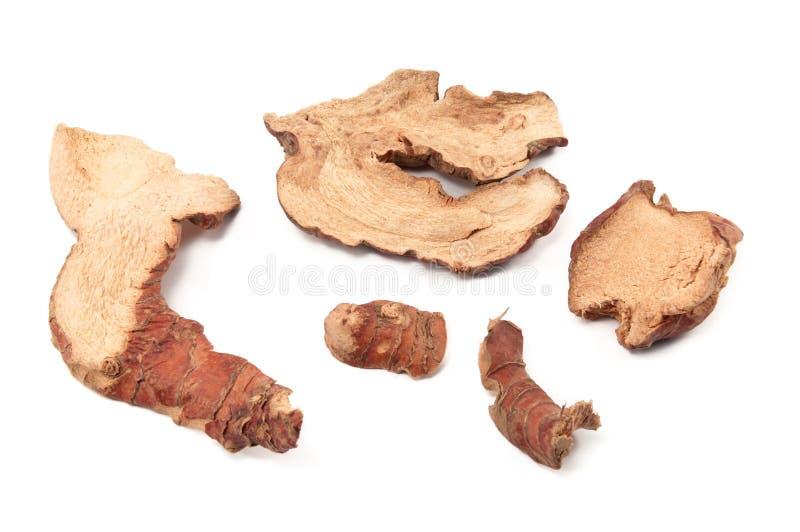Parts sèches de galangal images stock