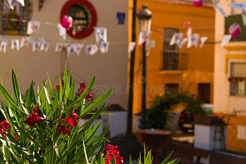 Party decoration outdoor in Spain. Plants garlands fun party birthdy spain andalucia stock image