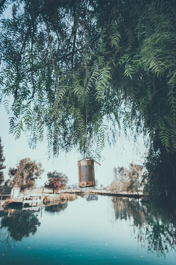 Party decorations for an outdoor summer gathering. Watere with cans hanging from a tree royalty free stock photo
