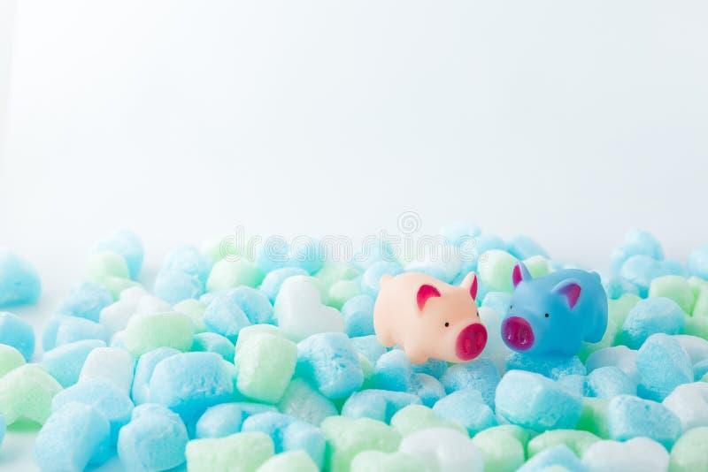 Pary świnia w miłości tle Dla walentynka dnia fotografia stock