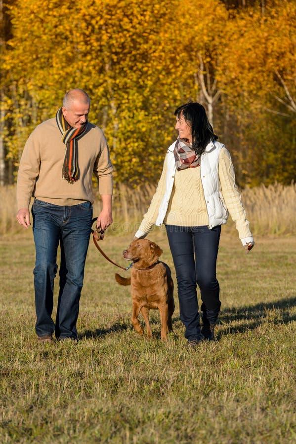 Pary odprowadzenia pies w jesień pogodnym parku obraz stock